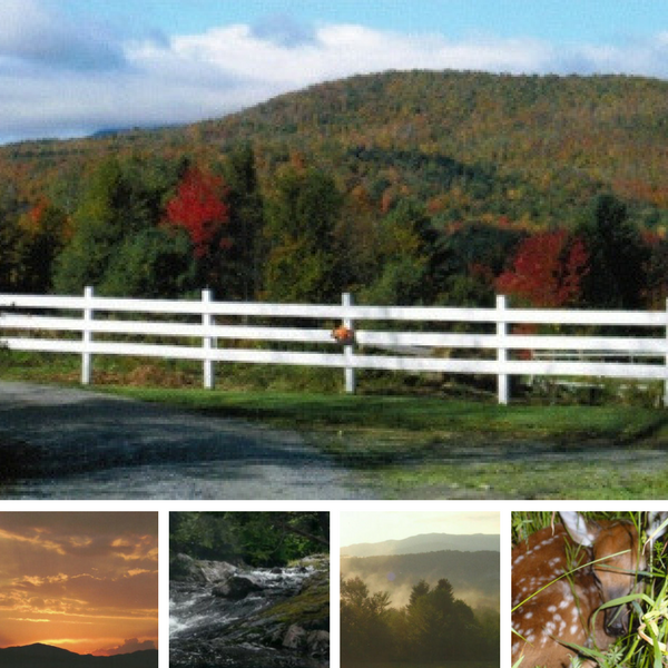 Sunh Kyst Arabians - where beauty abounds in our private paradise located in Vermont!