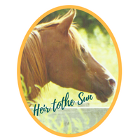 Heir to the Sun (The Sun Idol x Magic Silhouette) 1989 Chestnut Stallion