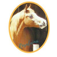 Rosalaina (Silvern Magic x Princess Alana) 1992 Chestnut Straight Crabbet Mare