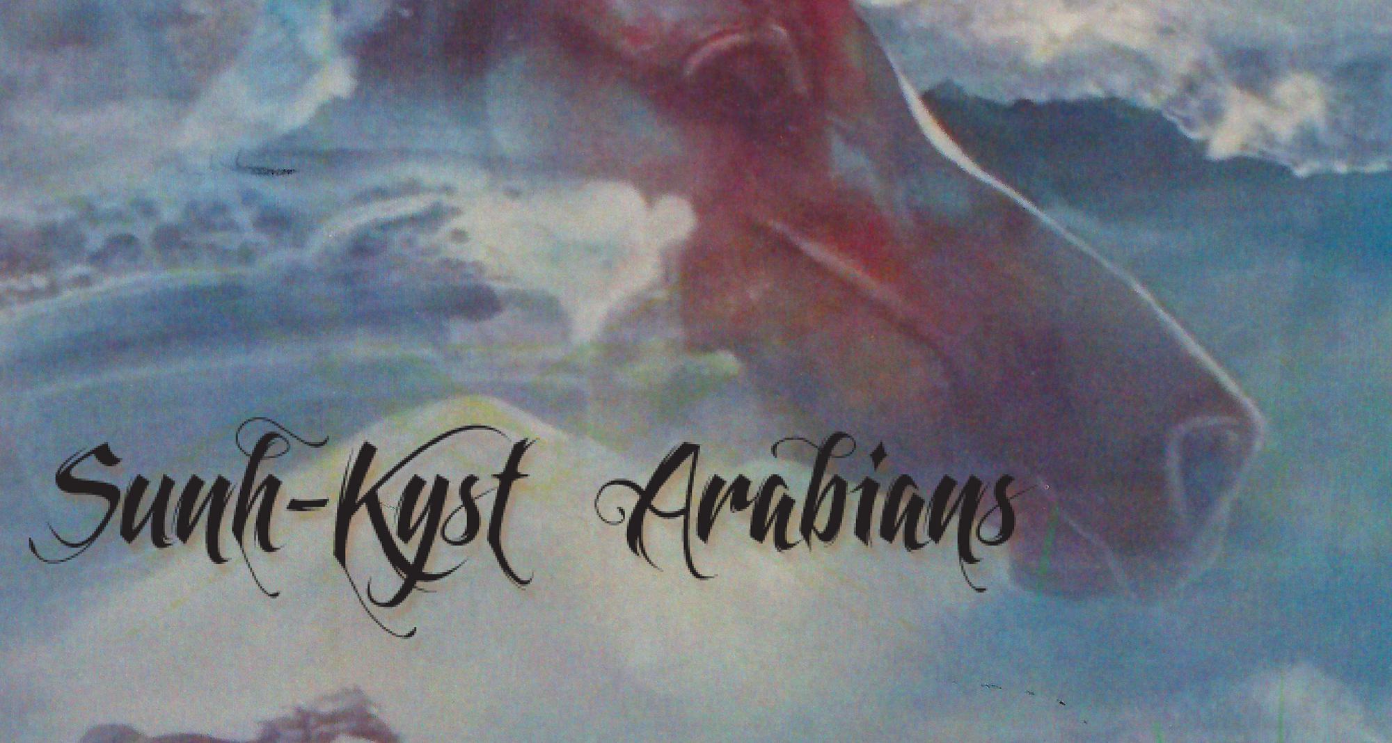 Sunh Kyst Arabians